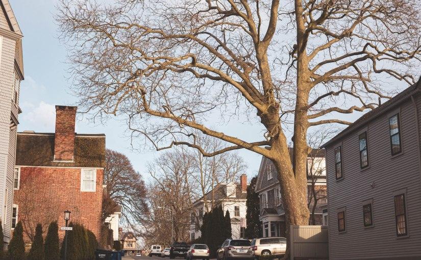 Street Photography in Newport,RI using a 50mmLens.